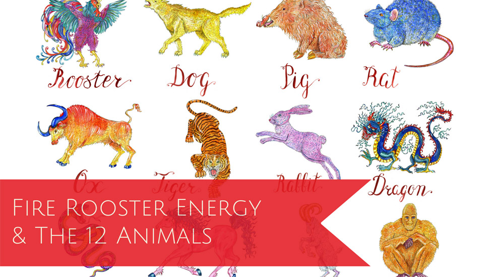 The Year of the Fire Rooster: A quick guide on how to use the energy of the new year